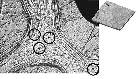 Schematic Representation Of Protein Structure And Its Organization Elsavadorla